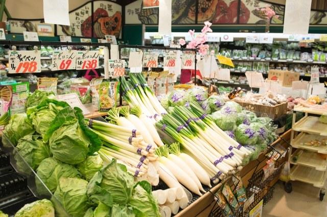 ネギやキャベツなどの野菜の陳列