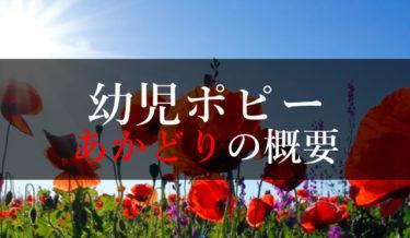 幼児ポピー年中向けあかどりの口コミ・評判【運動必須の理由】