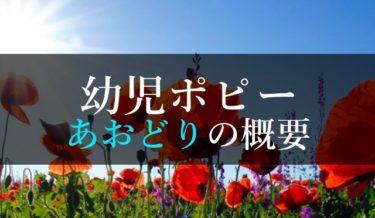 年長向け幼児ポピーあおどりの口コミ・評判【入学準備バッチリ】