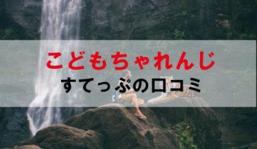こどもちゃれんじすてっぷの能力UPエデュトイベスト3【口コミ・評判・レビュー】